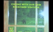 Living with Bears in VT: Our New Backyard Neighbors